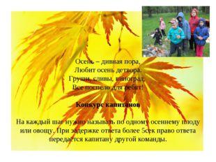 Осень – дивная пора, Любит осень детвора. Груши, сливы, виноград, Все поспело