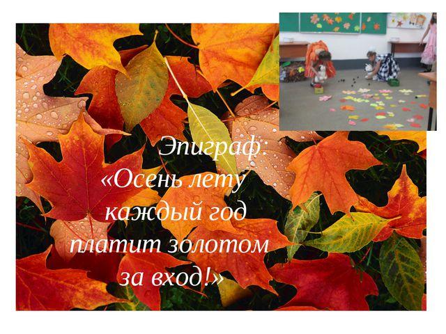 Эпиграф: «Осень лету каждый год платит золотом за вход!»