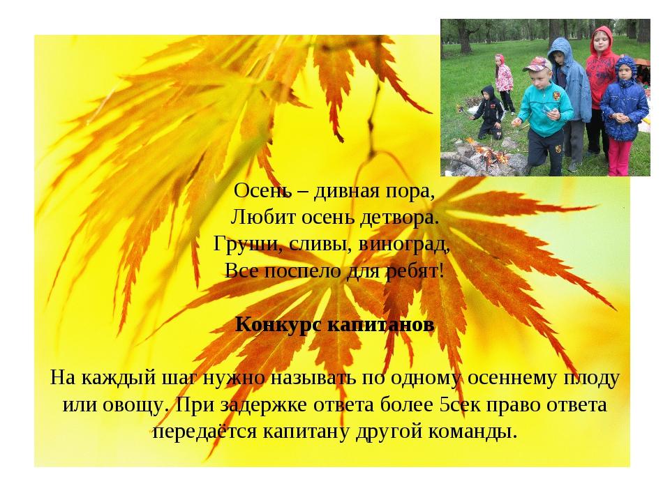 Осень – дивная пора, Любит осень детвора. Груши, сливы, виноград, Все поспело...