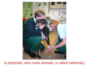 A physician, who cures animals, is called veterinary.