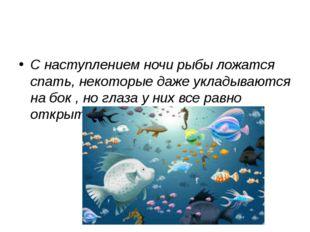 С наступлением ночи рыбы ложатся спать, некоторые даже укладываются на бок ,