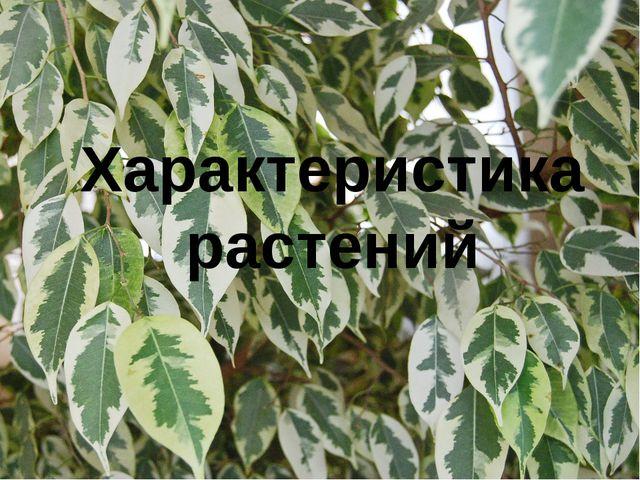 Характеристика растений