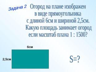 6см 2,5см