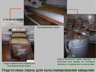 Гидротермическая обработка (проваривание) зерна Просушивание зерна Подготовл