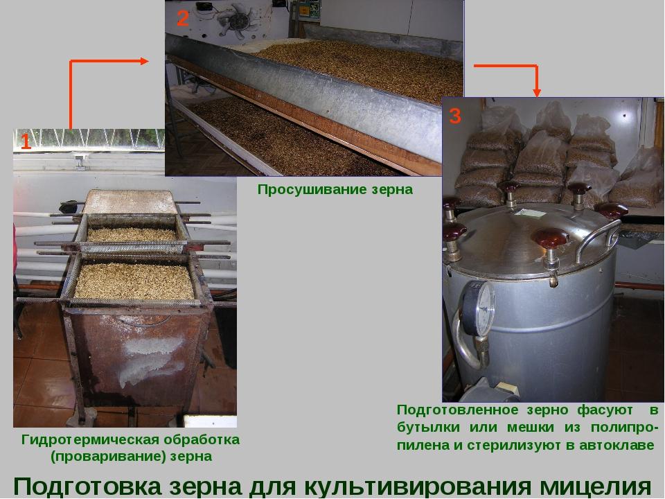 Гидротермическая обработка (проваривание) зерна Просушивание зерна Подготовл...