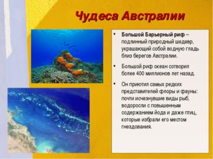 Большой Барьерный риф – подлинный природный шедевр, украшающий собой водную г