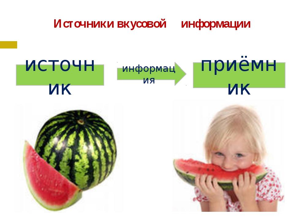 Источники вкусовой информации источник приёмник информация