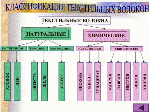 hello_html_m65ab5864.jpg