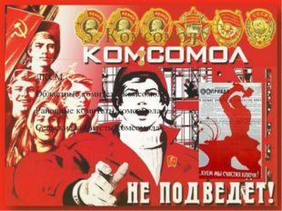 ЛКСМ Областные комитеты комсомола Районные комитеты комсомола Сельские комите