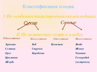 Классификация плодов I По особенностям строения околоплодника Сухие Сочные I