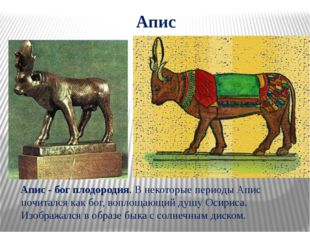 Апис Апис - бог плодородия. В некоторые периоды Апис почитался как бог, вопло