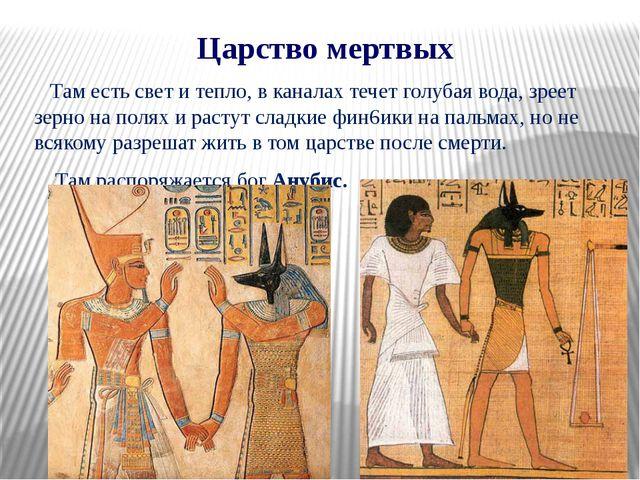 Царство мертвых Там есть свет и тепло, в каналах течет голубая вода, зреет зе...
