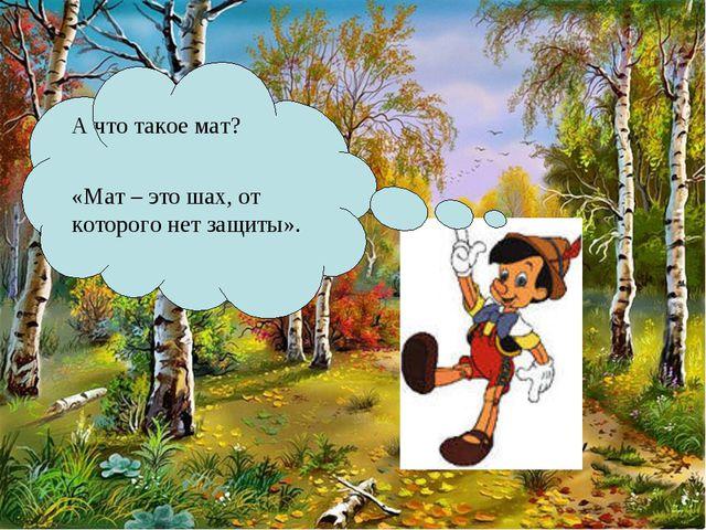 А что такое мат? «Мат – это шах, от которого нет защиты».