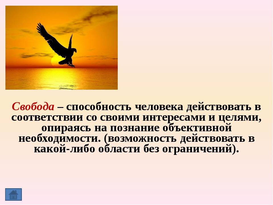 Декларация прав человека, Конвенция о правах ребенка, Конституция Российской...