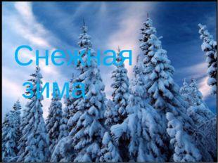 Снежная зима
