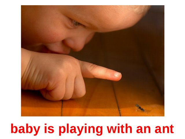 baby is playing with an ant