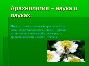 Арахнология – наука о пауках Паук - славян. с помощью приставки «па» от «онк»