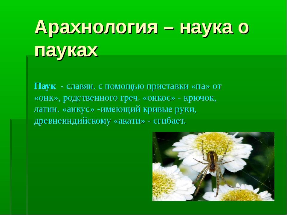 Арахнология – наука о пауках Паук - славян. с помощью приставки «па» от «онк»...