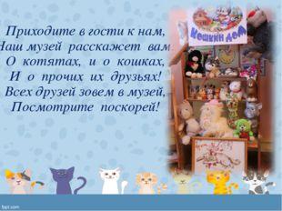 Приходите в гости к нам, Наш музей расскажет вам: О котятах, и о кошках, И о