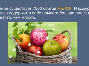 В мире существует 7500 сортов ЯБЛОК. И кожура яблока содержит в себе намного