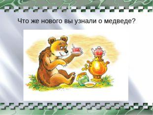 Что же нового вы узнали о медведе?