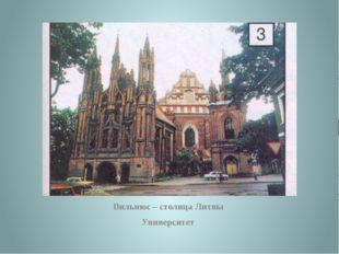 Вильнюс – столица Литвы Университет