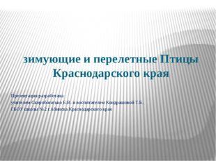 зимующие и перелетные Птицы Краснодарского края Презентация разработана учит
