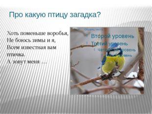 Про какую птицу загадка? Хоть поменьше воробья, Не боюсь зимы и я, Всем извес