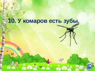 10. У комаров есть зубы.