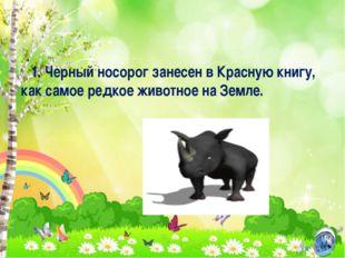 1. Черный носорог занесен в Красную книгу, как самое редкое животное на Земле.