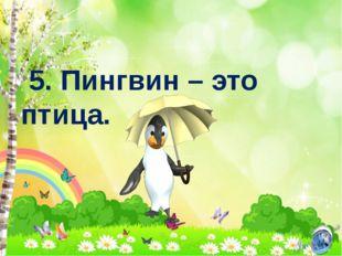 5. Пингвин – это птица.