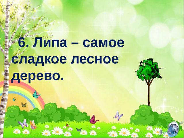 6. Липа – самое сладкое лесное дерево.