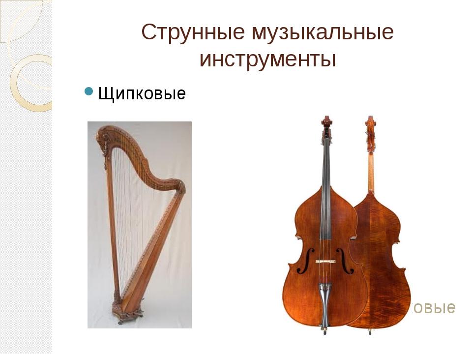 Струнные музыкальные инструменты Щипковые Смычковые