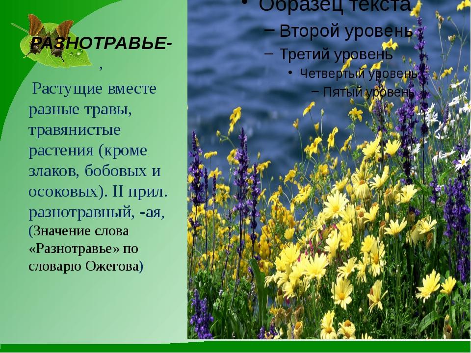 РАЗНОТРАВЬЕ-, Растущие вместе разные травы, травянистые растения (кроме злако...