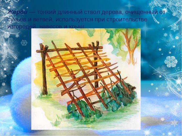 Жерди—тонкий длинныйствол дерева, очищенный от сучьев и ветвей, использует...
