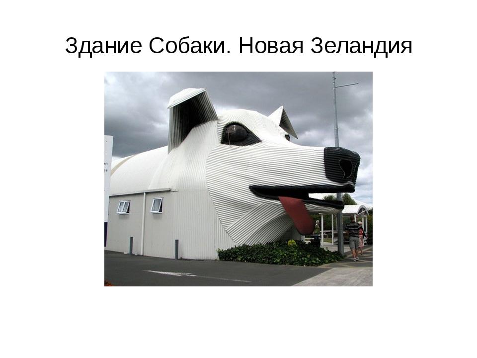 Здание Собаки. Новая Зеландия