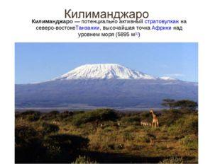 Килиманджаро— потенциально активныйстратовулканна северо-востокеТанзании,
