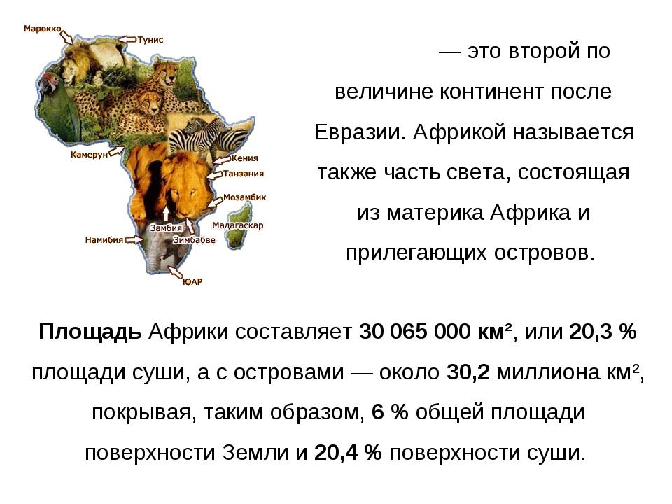 А́фрика— это второй по величине континент после Евразии. Африкой называется...