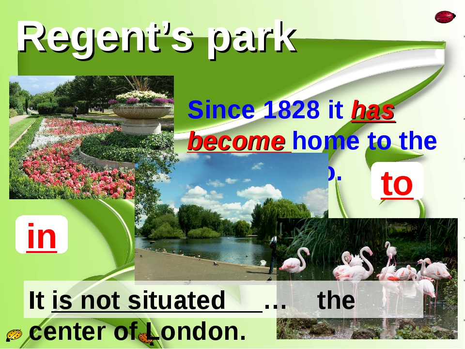 Regent's park Since 1828 it has become home to the London Zoo. to in It is no...