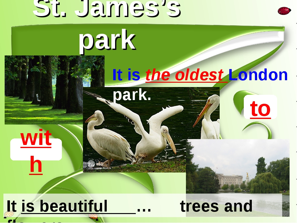 St. James's park to It is beautiful … trees and flowers. with It is the oldes...