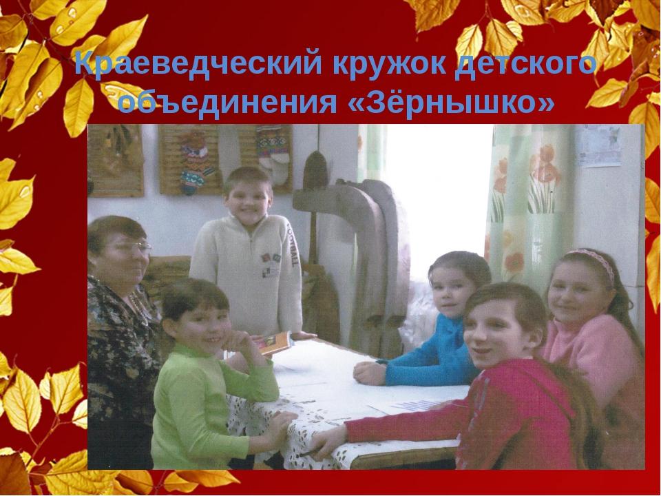 Краеведческий кружок детского объединения «Зёрнышко»
