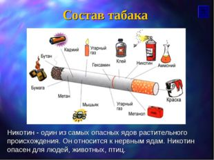 Состав табака Никотин - один из самых опасных ядов растительного происхождени
