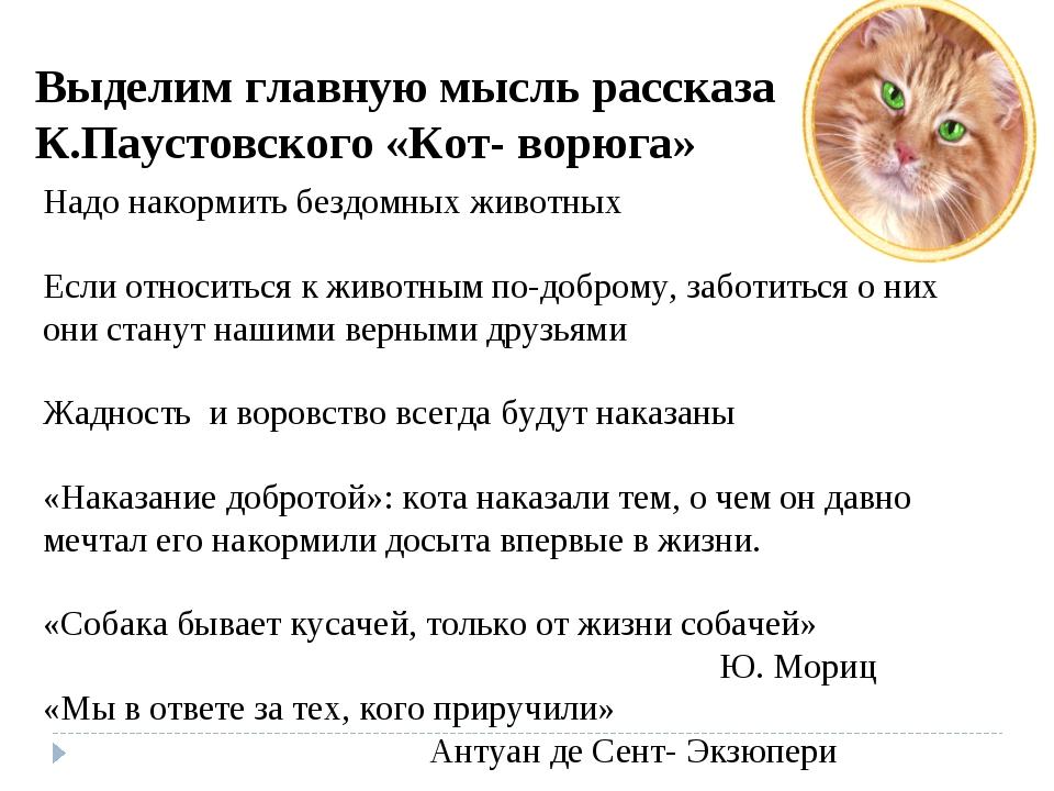 К.паустовский кот ворюга главная мысль