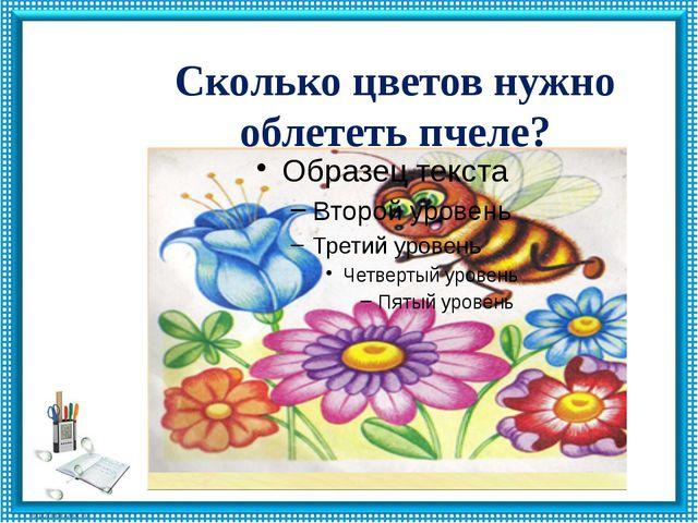 Сколько цветов нужно облететь пчеле?