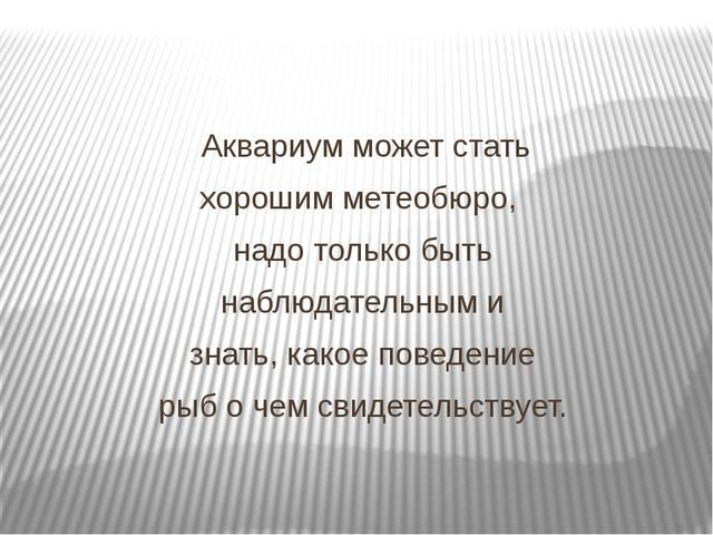 Аквариум может стать хорошим метеобюро, надо только быть наблюдательным и зн...