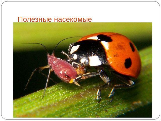 Полезные насекомые