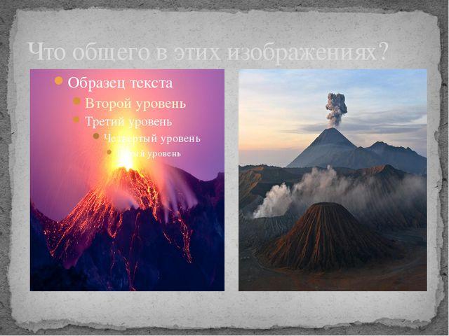Что общего в этих изображениях?