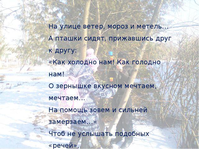 На улице ветер, мороз и метель… А пташки сидят, прижавшись друг к другу: «Ка...