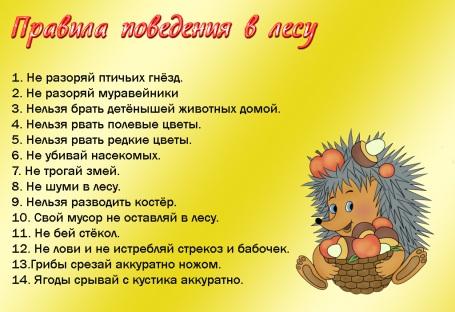 http://s60.radikal.ru/i169/0904/d6/04da7f99ed0d.jpg