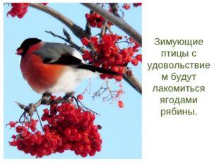 Зимующие птицы с удовольствием будут лакомиться ягодами рябины.